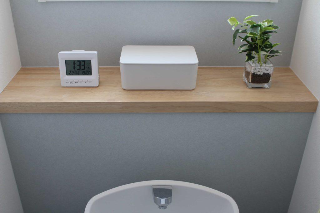 ニトリ フェイクグリーン 観葉植物 ガラスポット ペペロミア トイレ